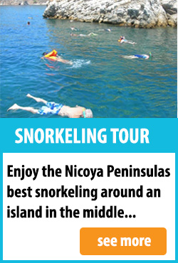 Snorkeling Tour in Mal Pais